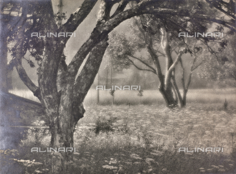 """CGD-F-000202-0000 - """"Spring"""" - Date of photography: 1950-1960 - Fratelli Alinari Museum Collections-Corinaldi Donation, Florence"""