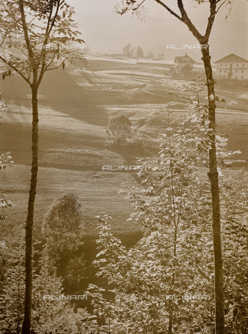 CGD-F-000319-0000 - Country landscape - Date of photography: 1955-1965 - Fratelli Alinari Museum Collections-Corinaldi Donation, Florence