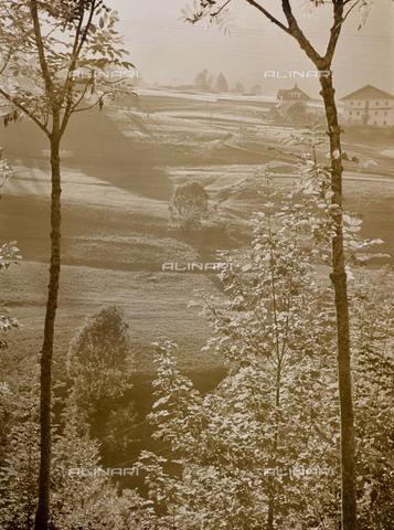 CGD-F-000319-0000 - Paesaggio campestre - Data dello scatto: 1955-1965 - Raccolte Museali Fratelli Alinari (RMFA)-donazione Corinaldi, Firenze