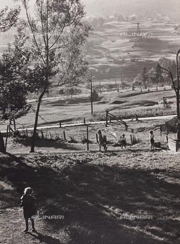 CGD-F-000321-0000 - Paesaggio campestre - Data dello scatto: 1955-1965 - Raccolte Museali Fratelli Alinari (RMFA)-donazione Corinaldi, Firenze