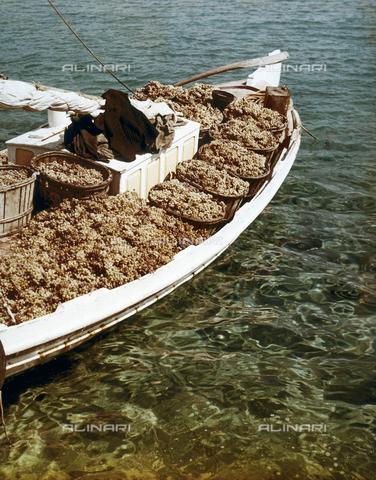 """CGD-F-000585-0000 - """"Colore di Grecia"""". Una imbarcazione carica di uva percorre le acque cristalline del mare Egeo. - Data dello scatto: 1965 ca. - Raccolte Museali Fratelli Alinari (RMFA)-donazione Corinaldi, Firenze"""
