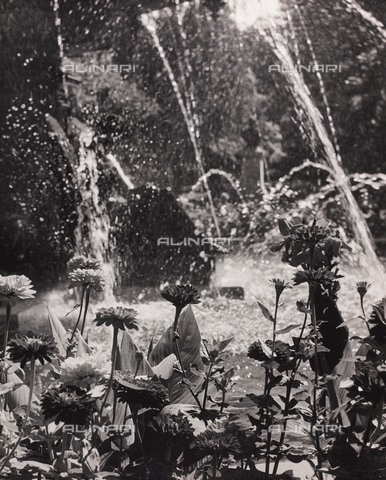 """CGD-F-000745-0000 - """"Fountain"""" - Date of photography: 1955-1965 - Fratelli Alinari Museum Collections-Corinaldi Donation, Florence"""