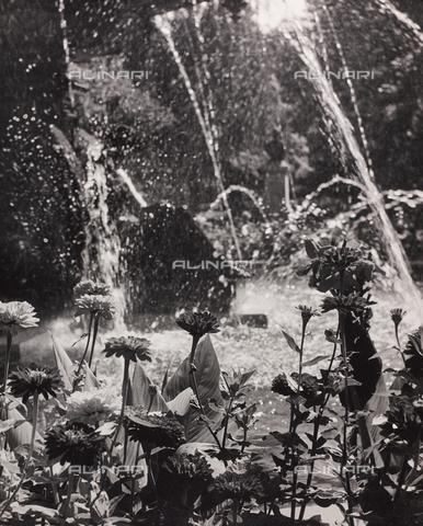 """CGD-F-000745-0000 - """"La Fontana"""" - Data dello scatto: 1955-1965 - Raccolte Museali Fratelli Alinari (RMFA)-donazione Corinaldi, Firenze"""