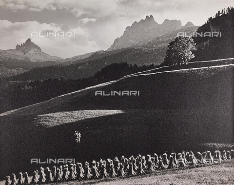 CGD-F-000975-0000 - Sheaves and mountains - Date of photography: 1955-1965 - Fratelli Alinari Museum Collections-Corinaldi Donation, Florence