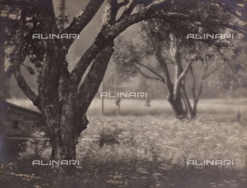 """CGD-F-000994-0000 - """"Spring"""" - Date of photography: 1955-1965 - Fratelli Alinari Museum Collections-Corinaldi Donation, Florence"""