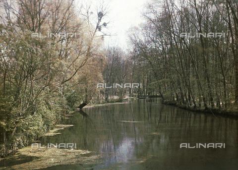 CHA-F-AU0606-0000 - River landscape near La Ferté-Alais, in France - Data dello scatto: 1920-1925 ca. - Archivi Alinari, Firenze