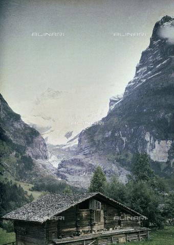 CHA-F-AU0607-0000 - The Grindelwald Glacier in Switzerland - Data dello scatto: 1910-1920 ca. - Archivi Alinari, Firenze