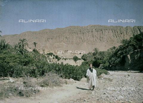 CHA-F-AU0633-0000 - Inhabitant of an oasis of El Kantara in Tunisia - Data dello scatto: 1907-1913 - Archivi Alinari, Firenze