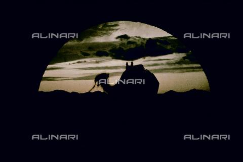 CHA-F-AU1122-0000 - Arabian camel at sunset - Data dello scatto: 1910-1920 ca. - Archivi Alinari, Firenze