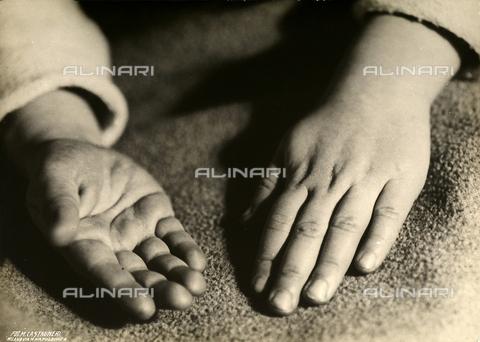 CMA-F-000087-0000 - Study of hands - Data dello scatto: 1930 ca. - Archivi Alinari, Firenze