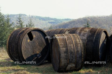 DAL-F-000051-0000 - Vecchie botti di rovere non più utilizzabili presso Badia a Coltibuono nel Chianti. - Data dello scatto: 1987 - Archivi Alinari, Firenze