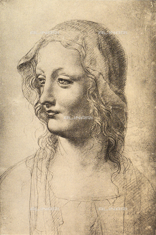 DIS-F-000003-0000 - Face of a woman, three quarter view, Gabinetto dei Disegni e delle Stampe, Uffizi Gallery, Florence