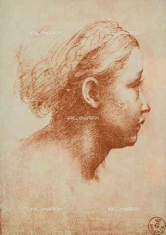 DIS-F-000021-0000 - Female face shown in profile, Drawing by Raffaello preserved in the Room of Drawings and Prints in the Gallery of the Uffizi.