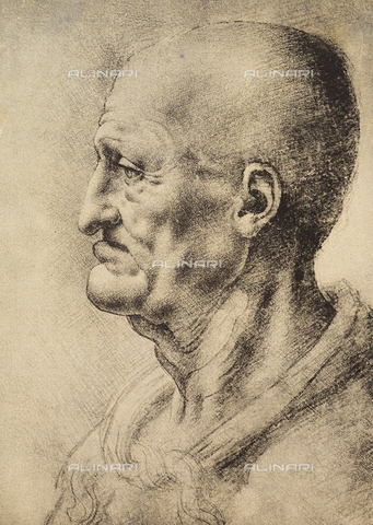 DIS-F-000026-0000 - Head of a man seen in profile, drawing, Leonardo da Vinci, Gabinetto dei Disegni e delle Stampe, Uffizi Gallery, Florence.