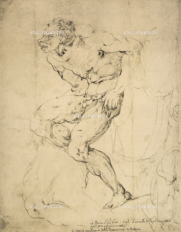 DIS-F-000145-0000 - Studies for the Sistine Chapel, drawing by Michelangelo, Gabinetto dei Disegni e delle Stampe, Uffizi Gallery, Florence