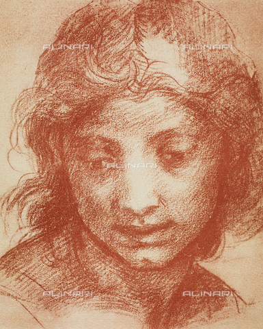 DIS-F-000156-0000 - Portrait of a young man, Room of Drawings and Prints, Uffizi Gallery, Florence.
