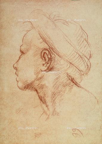 DIS-F-000199-0000 - Male face in profile, Gabinetto dei Disegni e delle Stampe, Uffizi Gallery, Florence