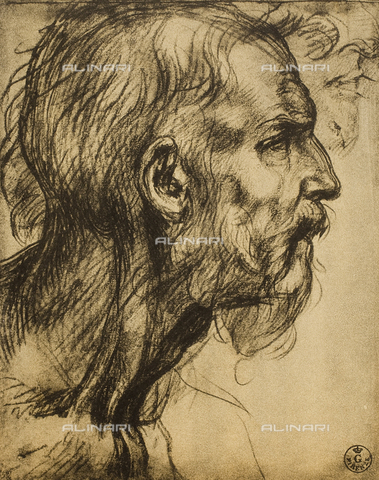 DIS-F-000249-0000 - Drawing with male profile, by Andrea del Sarto in the Uffizi Gallery, in the Gabinetto dei Disegni e delle Stampe