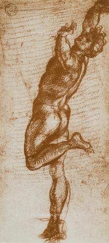 DIS-F-000307-0000 - Falling man, Andrea del Sarto, Gabinetto dei Disegni e delle Stampe, Uffizi Gallery, Florence.