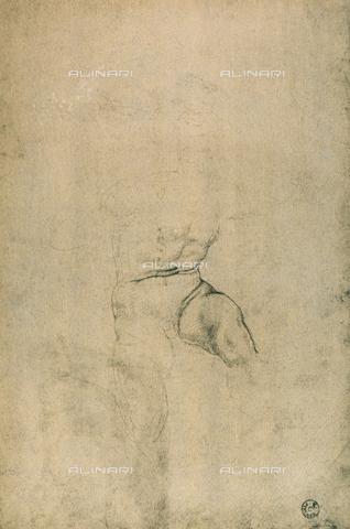 DIS-F-000419-0000 - Male nude, Michelangelo, Gabinetto dei Disegni e delle Stampe, Uffizi Gallery, Florence