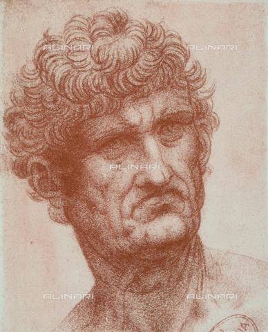 DIS-F-000489-0000 - Ritratto maschile, Gallerie dell'Accademia, Venezia