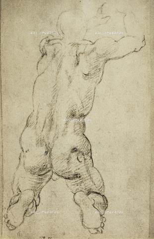 DIS-F-000854-0000 - Kneeling male figure, Casa Buonarroti, Florence