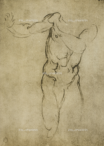 DIS-F-000866-0000 - Study for a masculine bust, Michelangelo, Casa Buonarroti, Florence