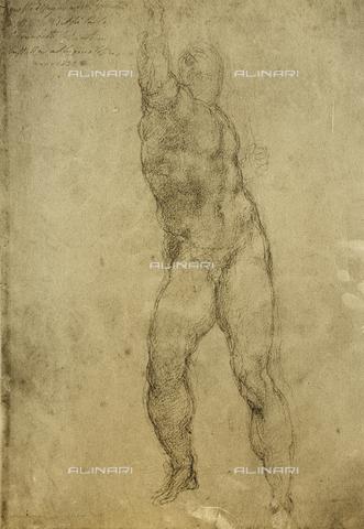 DIS-F-000868-0000 - Nude study, Gallerie dell'Accademia, Venice