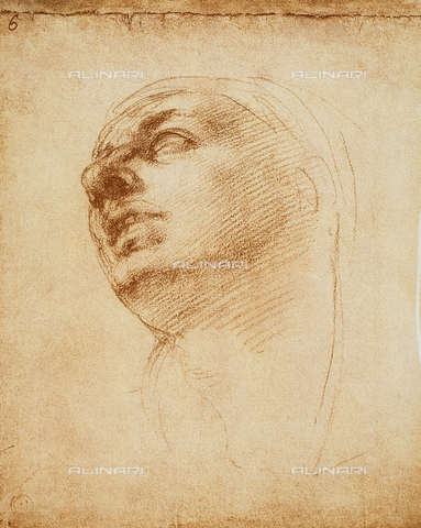 DIS-F-001024-0000 - Study of a face, Casa Buonarroti, Florence