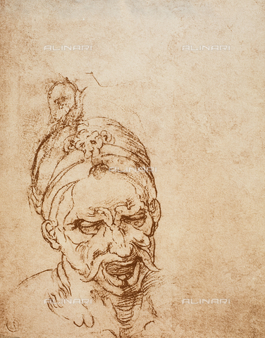 DIS-F-001025-0000 - Study of a head, Casa Buonarroti, Florence