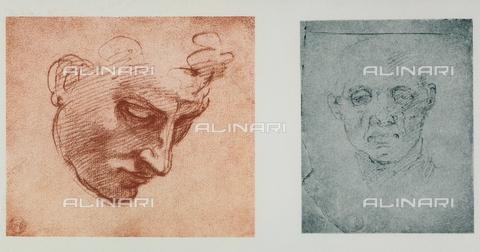 DIS-F-001038-0000 - Un volto di fronte e uno di profilo; disegni di Michelangelo conservati nella Casa Buonarroti a Firenze