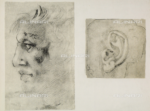 DIS-F-001039-0000 - An ear and a male face in profile; drawings by Michelangelo. Casa Buonarroti, Florence