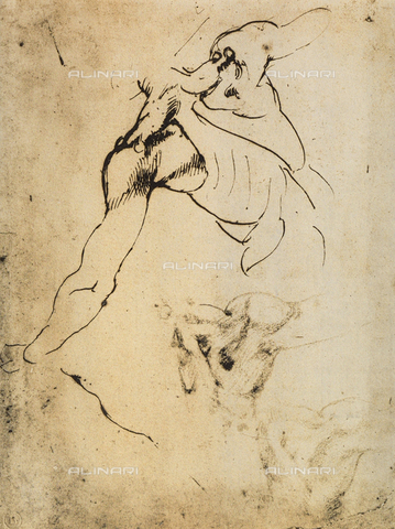 DIS-F-001044-0000 - Male anatomical study; drawing by Michelangelo. Casa Buonarroti, Florence
