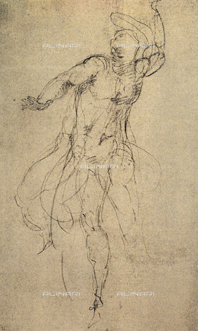 DIS-F-001048-0000 - Study for the Last Judgment; drawing by Michelangelo. Casa Buonarroti, Florence