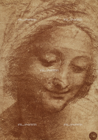 DIS-F-001060-0000 - Head of St. Anne; drawing by Leonardo da Vinci, Gallerie dell'Accademia, Venice