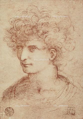 DIS-F-001062-0000 - Ritratto maschile, Gallerie dell'Accademia, Venezia