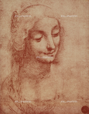 DIS-F-001063-0000 - Woman's face, Gallerie dell'Accademia, Venice