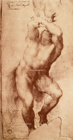 DIS-F-001066-0000 - Study for one of the figures of the Last Judgement, Gallerie dell'Accademia, Venice