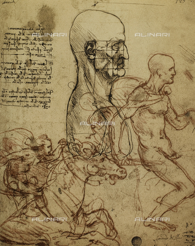 DIS-F-001084-0000 - Study of the human features and a knight, drawing by Leonardo, Galleries of the Academy, Venice