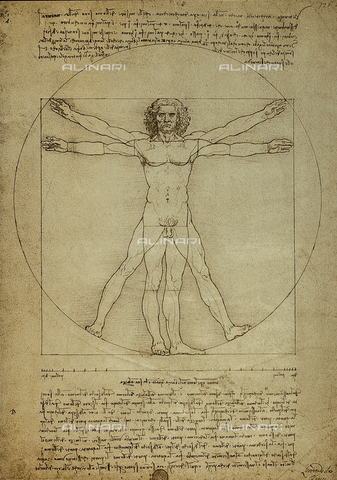 DIS-F-001085-0000 - Vinci, Leonardo da (1452-1519), 'Vitruvian man, proportions of the human figure', c.1492, pen and ink on paper, Galleria dell' Accademia, Venice, Italy