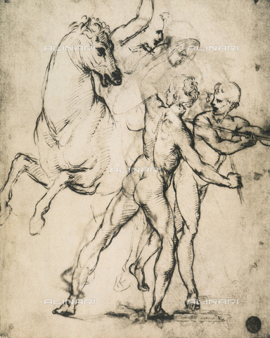 DIS-F-001096-0000 - Male nudes with horse, drawing, Gallerie dell'Accademia