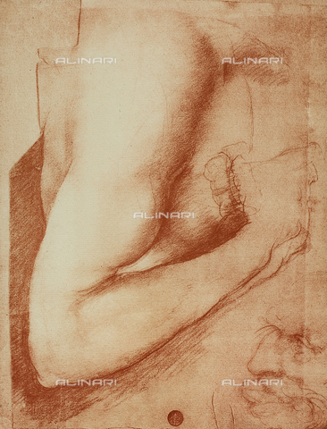 DIS-F-001115-0000 - Study for an arm, Gallerie dell'Accademia, Venice