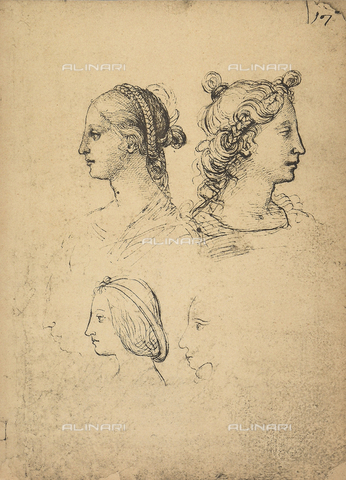 DIS-F-001125-0000 - Teste femminili di profilo, Gallerie dell'Accademia, Venezia