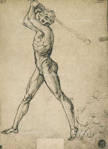 DIS-F-001138-0000 - Ercole abbatte il toro, Gallerie dell'Accademia, Venezia