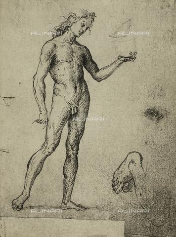 DIS-F-001141-0000 - Nudo maschile, Gallerie dell'Accademia, Venezia