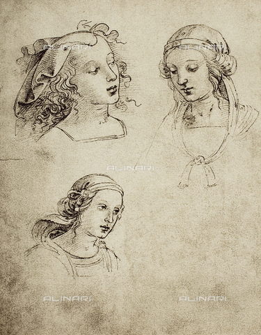 DIS-F-001151-0000 - Women's heads, Gallerie dell'Accademia, Venice