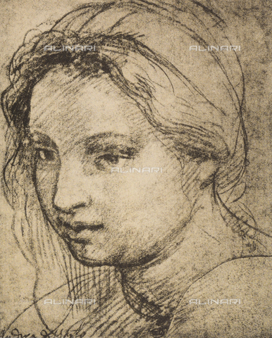 DIS-F-001271-0000 - Woman's head, Andrea del Sarto, The Louvre, Paris