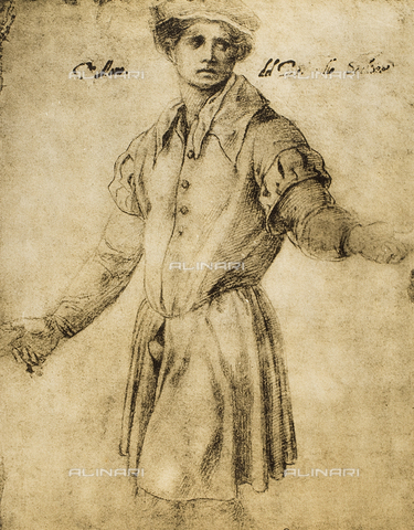 DIS-F-001279-0000 - Portrait of a Florentine youth, Andrea del Sarto, The Louvre, Paris