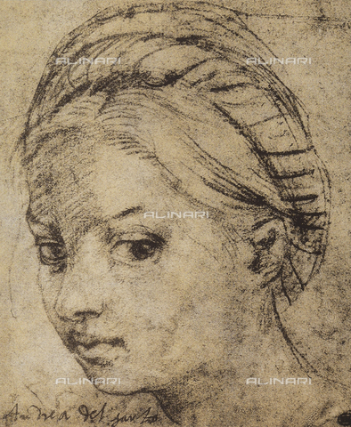 DIS-F-001280-0000 - Girl's head, Andrea del Sarto, The Louvre, Paris