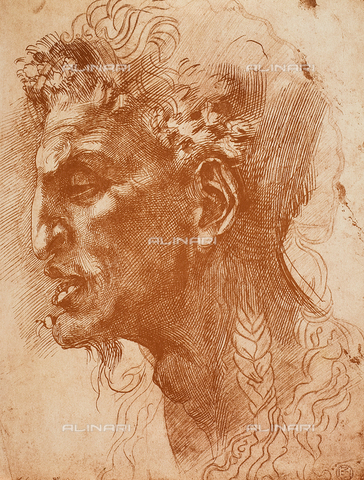 DIS-F-001335-0000 - Satyr's head, drawing, Michelangelo, The Louvre, Paris